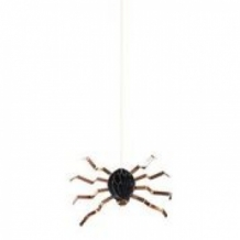 6 hanging spiders